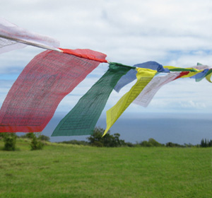 Highest quality handmade cotton and polyester prayer flags